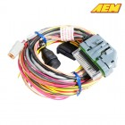 "AEM Electronics AQ-1 96"" Flying Lead Wiring Harness (Universal)"